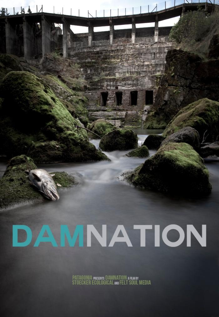 DamNation Film