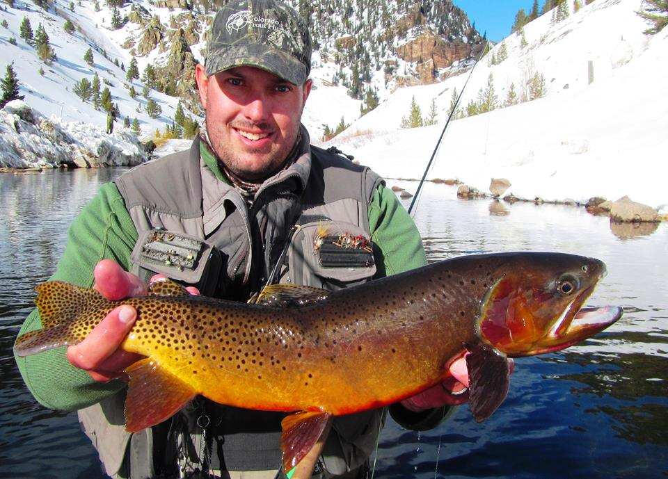 Photo magnificent colorado cutthroat from tad howard and for Colorado trout fishing