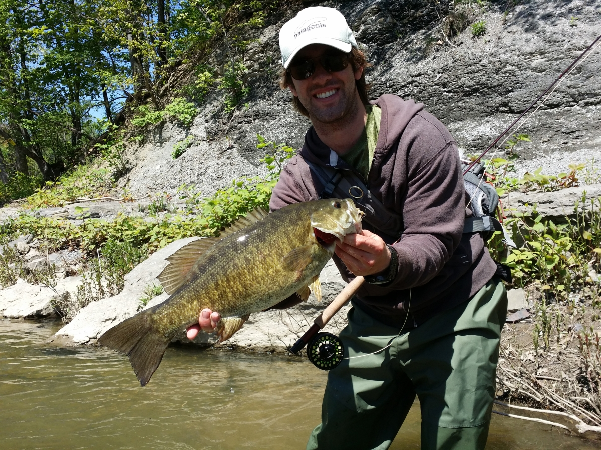 Fly fishing photo fat lake erie tributary smallmouth bass for Fly fishing outfitters