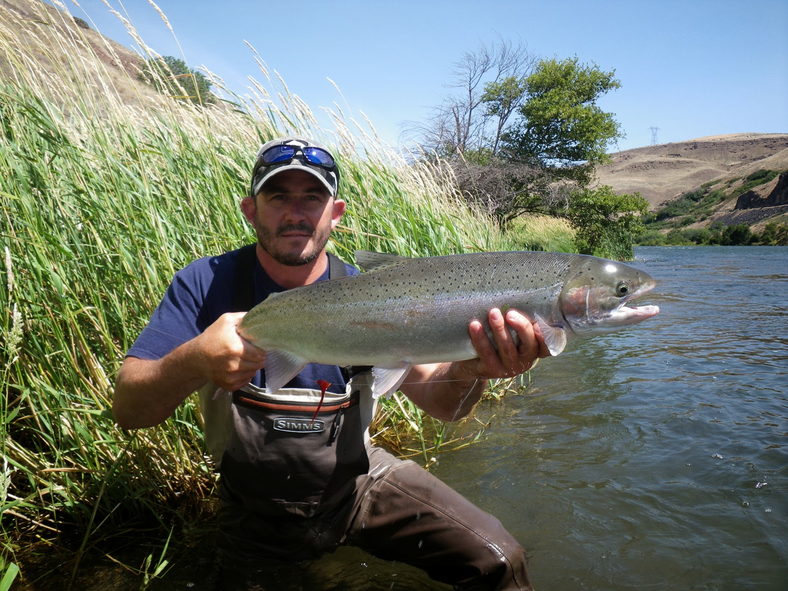Steelhead outfitters 2 the venturing angler for Fly fishing outfitters