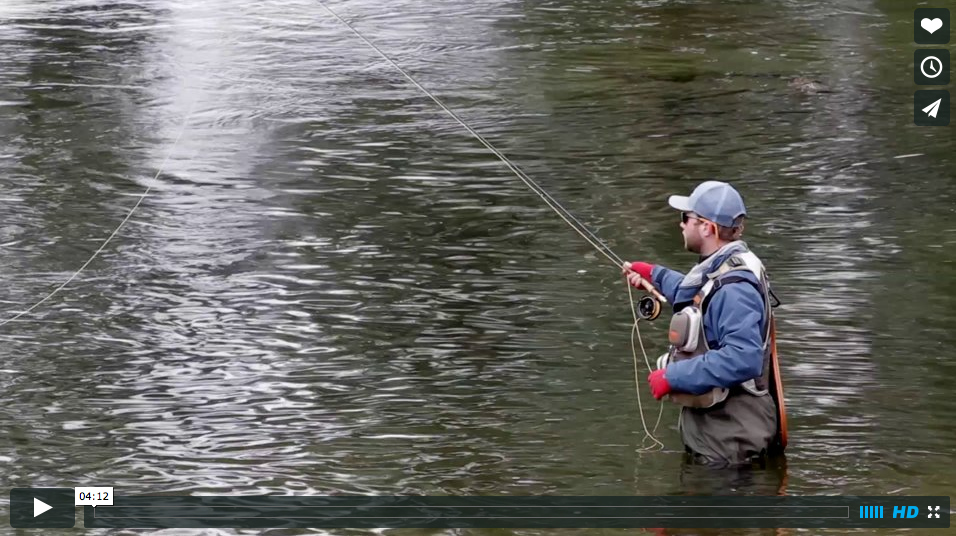 Video fly fishing the taylor river in colorado the for Taylor fly fishing