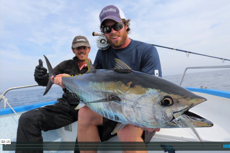 Video fly fishing for mediterranean bluefin tuna the for Fly fishing classes near me