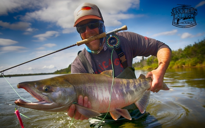 Angler's Alibi Alaska Chum Salmon