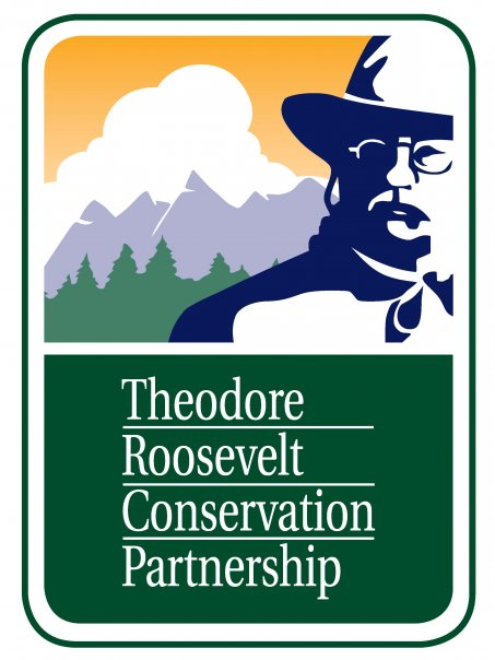 theodore roosevelt and environmental conservationism A photo of roosevelt in a hunting costume, rifle at the ready, remains one of the most iconic images of the american conservation movement.