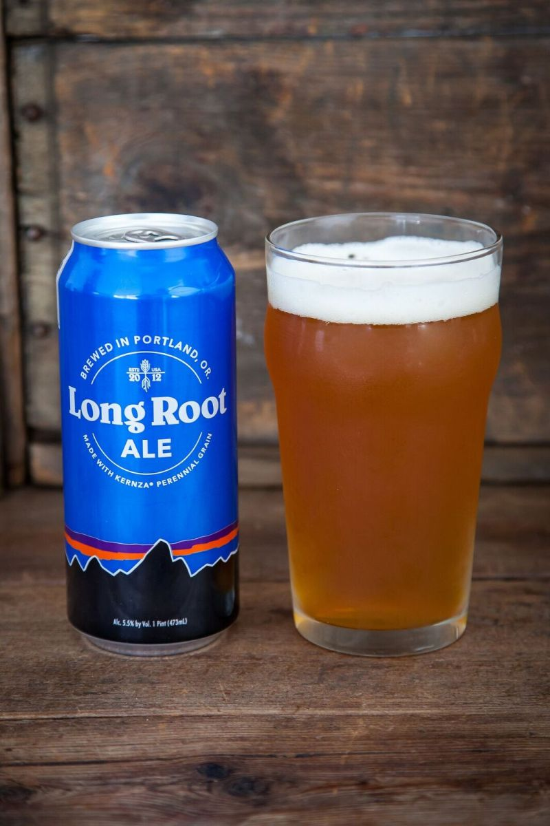 Long Root Ale Whole Foods