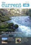 the-current-magazine
