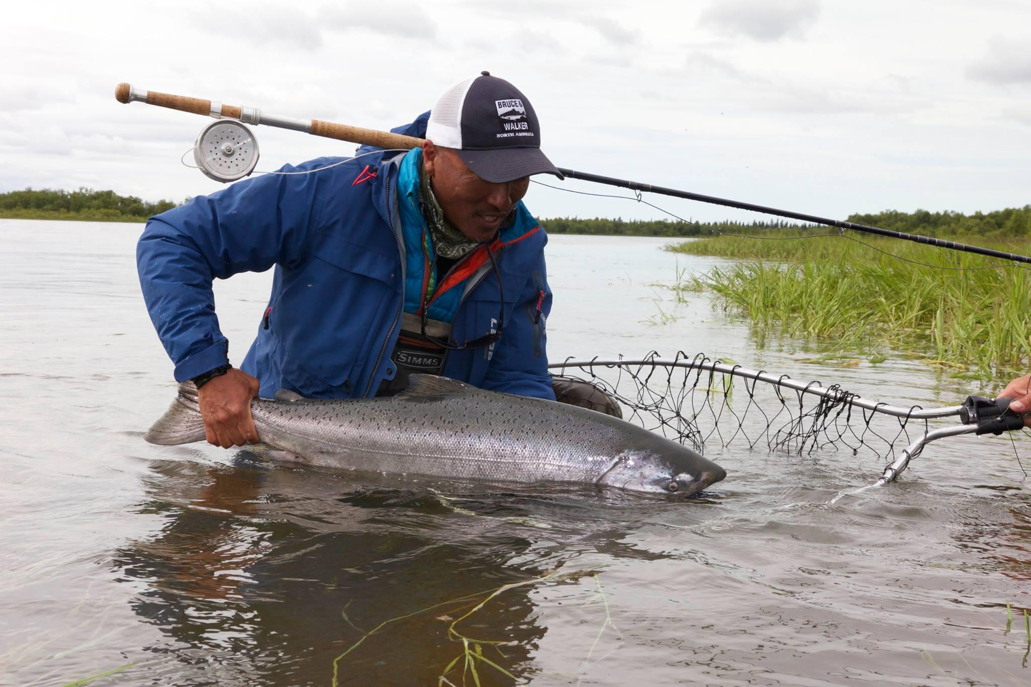 Salmon the venturing angler for Fly fishing alaska