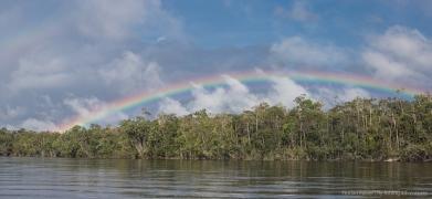 marie rainbow